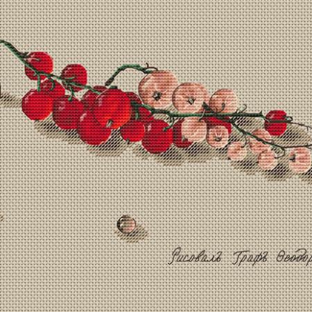 Авторская схема для вышивки крестом Екатерины Волковой - Смородина