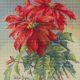 Авторская схема для вышивки крестом Екатерины Волковой - Пуансетия