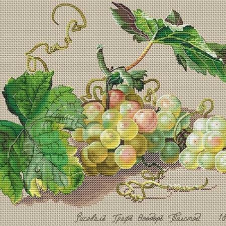 Авторская схема для вышивки крестом Екатерины Волковой - Виноград