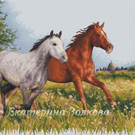 Авторская схема для вышивки крестом Екатерины Волковой - Ветру на встречу