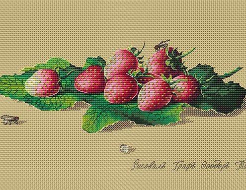 Авторская схема для вышивки крестом Екатерины Волковой - Клубника