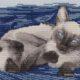 Авторская схема для вышивки крестом Екатерины Волковой Тайцы
