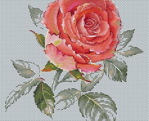 Авторская схема для вышивки крестом Екатерины Волковой - Роза восхищение