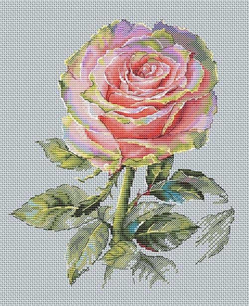 Авторская схема для вышивки крестом Екатерины Волковой - Роза обаяние