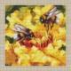 Авторская схема для вышивки крестом Екатерины Волковой - охота на мёд